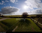 Wide-angle picture of a lone tree on the South Downs, Sussex, England, UK