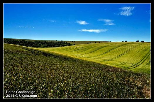 South Downs near Falmer Hill, Brighton