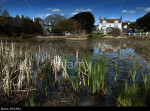 Across Rottingdean village pond towards The Elms, where Rudyard Kipling lived and wrote Kim and some Just So Stories