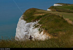 Beachy Head: wooden ccross at one of the most notorious suicide spots in the world