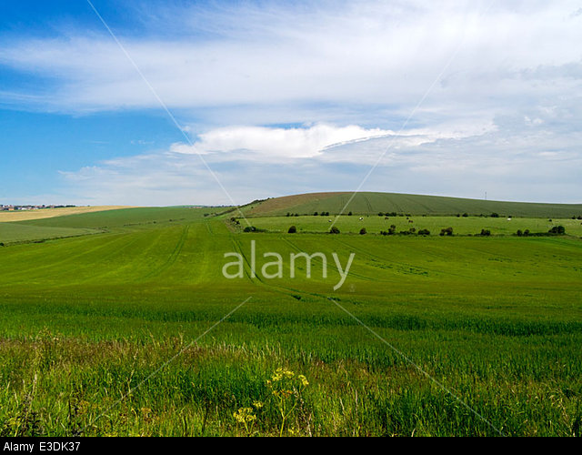 The South Downs near Woodingdean, Brighton, East Sussex, UK - taken from near Ovingdean